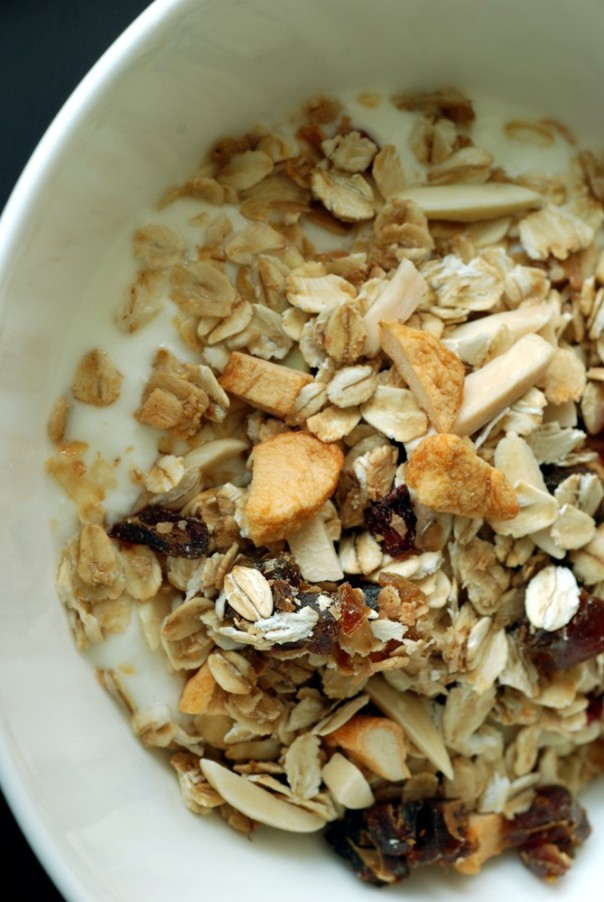Low-Fat Winter Fruit Granola