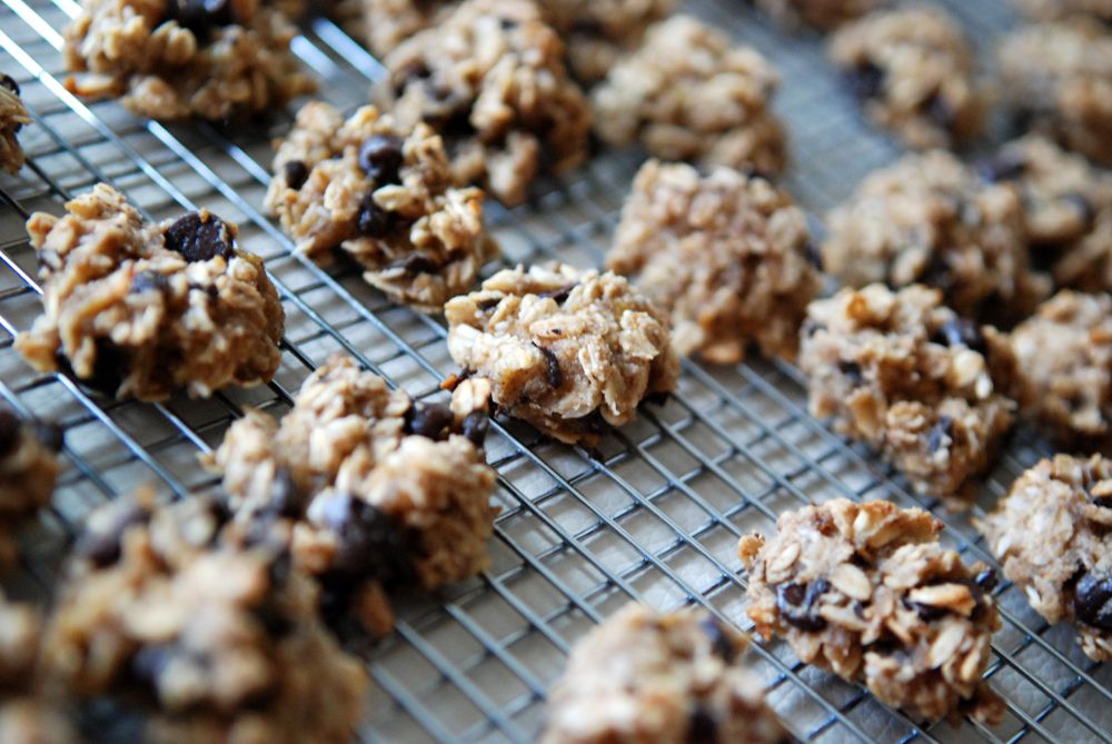 ... chocolate banana coconut almond cookies (aka Nikki's Healthy Cookies