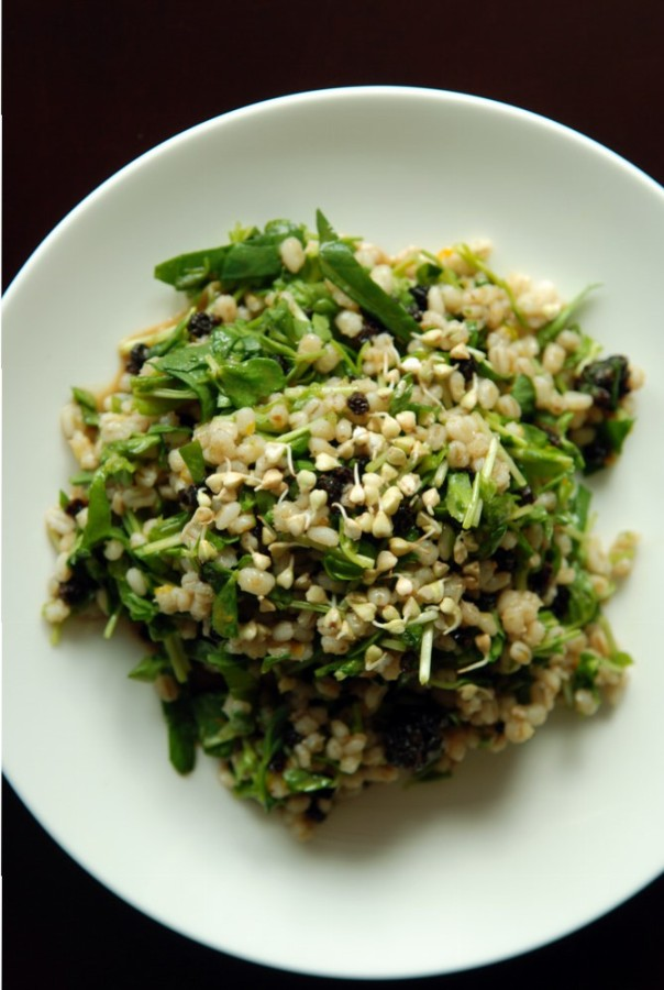 Moroccan Barley and Pea Shoot Salad