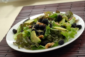 Blackberry, Avocado and Walnut Salad with a Ginger Lime Vinaigrette