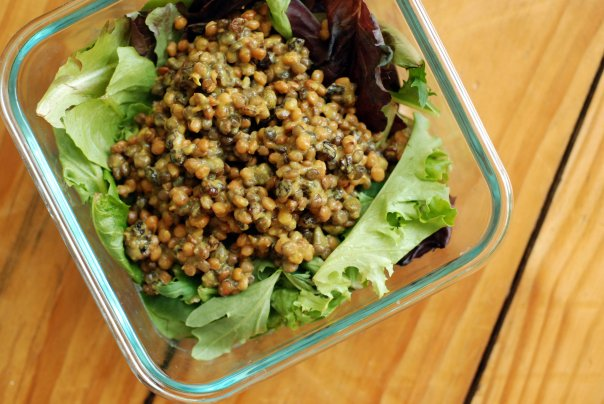 Creamy Curried Lentil Salad